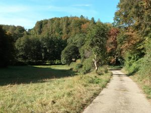 Wanderung Musikverein Gumbsweiler @ Obereisenbach | Sankt Julian | Rheinland-Pfalz | Deutschland